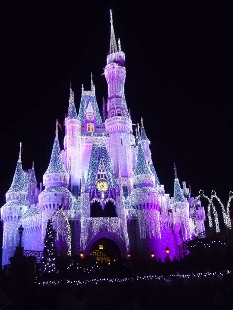 Details About Cinderella's Castle Experience At Disney World